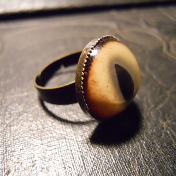 Bobcat Cats Eye Taxidermy Glass Eye Ring