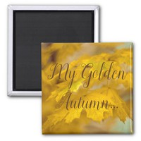 Yellow autumn maple leaves. Add you text or name. Magnet