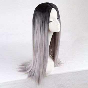 Long Straight Hair Two Tone  Wig Heat Resistant Fiber Synthetic Wigs