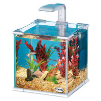 Top Fin® Glass Aquarium w/ LED Light & Internal Filter - Sale - Fish - PetSmart