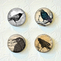 Magnet Set Crows, Black Crows,  Buy 3 Get 1 Free  351M