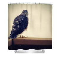 The Visitor Lake Huron Michigan Shower Curtain for Sale by Marysue Ryan