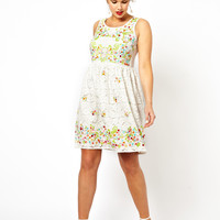 ASOS CURVE Exclusive Salon Dress In Lace Embroidery