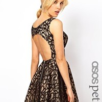 ASOS PETITE Exclusive Lace Full Skirted Dress with Cut Out Back - Crea