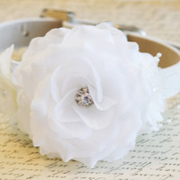 white Floral dog collar, flowers with Pearls and Rhinestones, White Wedding accessory, Floral dog collar, Pet Wedding accessory