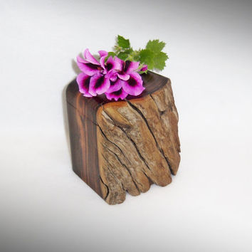 Desert Ironwood Keepsake Box - Rustic and Finished