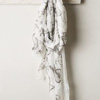 Cycle Tour Scarf by Anthropologie Black & White One Size Scarves