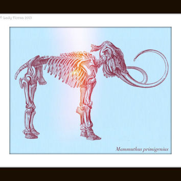 Mammoth Print, Wooly Mammoth fossil, nerd art poster, dinosaur print, dorm decor, kid wall art, digital print, science art - custom sizes