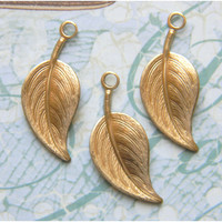Raw Brass Leaf Leaves Stamping Drop Embellishment 12mm x 28mm - 6 pcs. (r204)