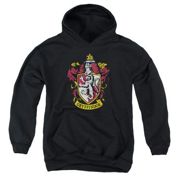 Harry Potter - Gryffindor Crest Youth Pull Over Hoodie