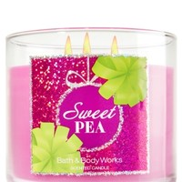 3-Wick Candle Sweet Pea