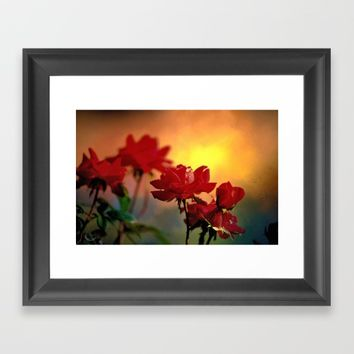 Sunrise On Roses  Framed Art Print by Theresa Campbell D'August Art