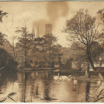 "Dreamy Sepia Image of Swans in Park ""Ribe Aaparti"" - Danish Woman watching Swans in Park - Sienna - Early 1900s Vintage Postcard"