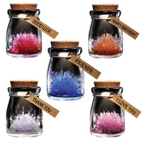 Crystal Wish Flowers grow your own Light Up crystals collectible unusual gifts