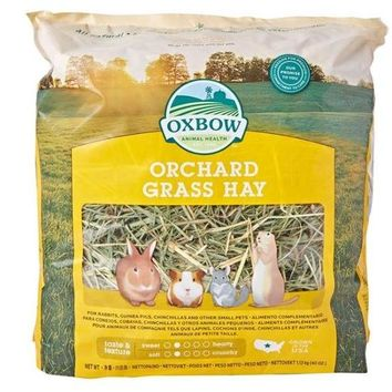 Oxbow Orchard Grass Hay Small Pet Food 40 oz