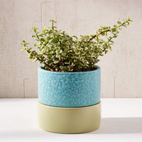 "Madison 6"" Planter + Drainage Tray Set 