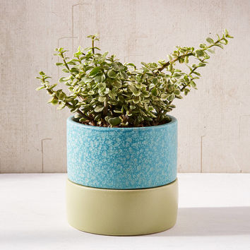 """Madison 6"""" Planter + Drainage Tray Set 