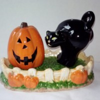 Halloween Pumpkin n Black Cat in Fence Salt n Pepper Shakers Collectable Novelty