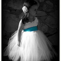 ON SALE NOW Tulle and Taffeta Flower Girl Dress. Tutu Dress. Blue Sash. Customizable