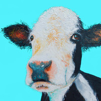 Black And White Cow On Blue Background
