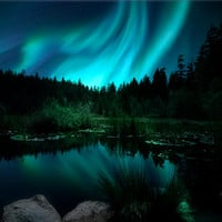 Northern Lights Photography Woodland Decor Aurora Borealis Photo Aqua Green Wall Art Large Wall Art Enchanted Forest Lily Pond Celestial Art