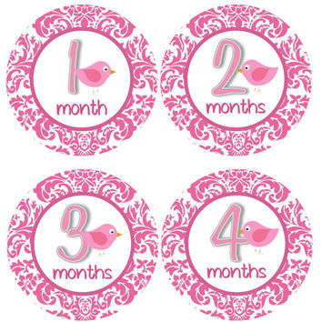 Monthly Onesuit Stickers Girl Baby Month Stickers Hot Pink Bird Birdie Monthly Onesuit Sticker Girl Baby Shower Gift Photo Prop -April3