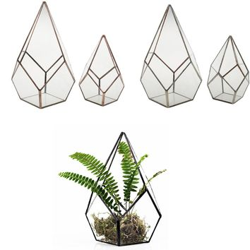 Tabletop Air Planter Succulent Diamond Glass Geometric Terrarium Box Moss Fern Flower Pot