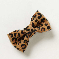 Spotted Leopard Bow Clip