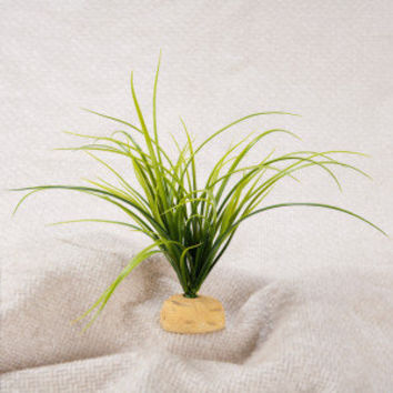 Exo Terra Turtle Grass Aquatic Ground Plant - Decorations - Fish - PetSmart