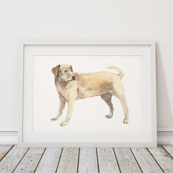 Labrador poster Cute nursery decor Watercolor dog print ACW100