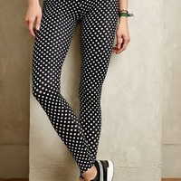 Dotted High Rise Leggings