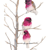 Watercolor Bird Painting, watercolor painting, bird art, nature, finches, winter painting, snow, small birds, twigs, 8X10 print