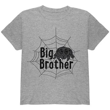Big Brother Cute Spider Youth T Shirt