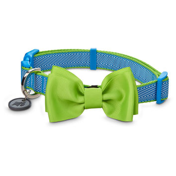 Good2Go Bow Tie Dog Collar