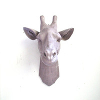 Faux Taxidermy Large Giraffe Head wall mount wall hanging home decor:  Gerome the Giraffe in light purple-gray