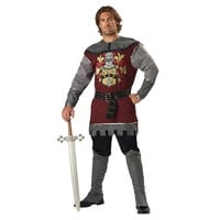 Noble Knight Costume - Adult (Grey)