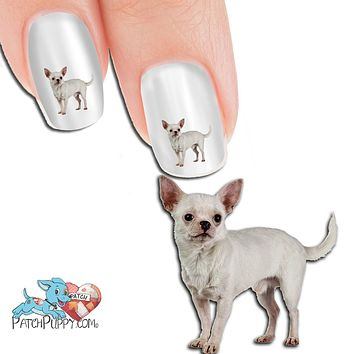 Chihuahua White Nail Art Decals (NOW 50% MORE FREE)