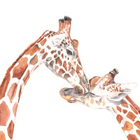 Giraffes watercolor painting - Print of watercolor painting A4 print