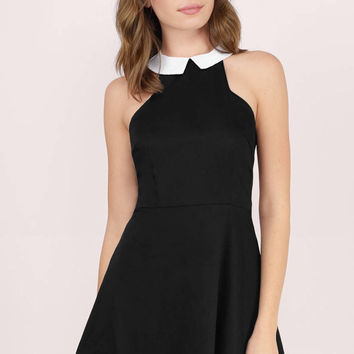 Robin Collared Skater Dress