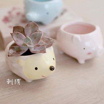 Cute Animal Ceramic Air Plant Container Succulent Herb Pot Garden Planter Home Decoration