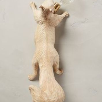 Flying Squirrel Handcarved Woodlore Sconce by Anthropologie in Neutral Size: One Size Lighting
