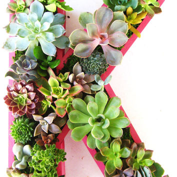 Succulent Monogrammed Planter Box As Seen In by RootedInSucculents