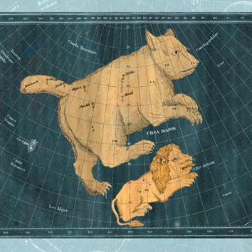 Ursa Major and Leo Minor #1 20x30 poster