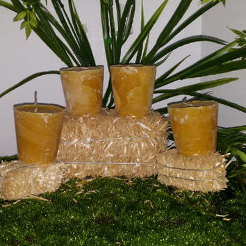 Pure Domestic Beeswax Votive Candle 4 pack with 12.5 hr. plus burn time