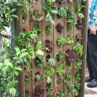 goodkarmahandmade: upcycled wine rack garden ...