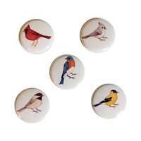 "Birds 1"" Pin Button Set"