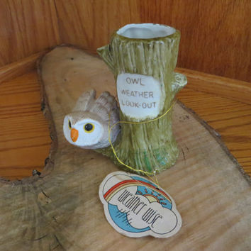 Enesco Weather Wise Color Changing Weather Owl on Tree