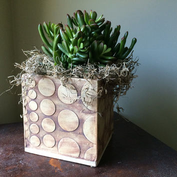 Square Ceramic Hand Made  Bubble Herb and Flower Planter  in Iron