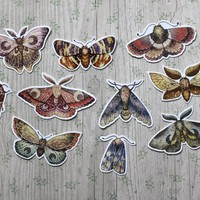 Moon moths stickers. witch sticker pack. occult gothic esoteric sticker set. lunar moth. scrapbook planner bulletjournal stickers. Butterfly