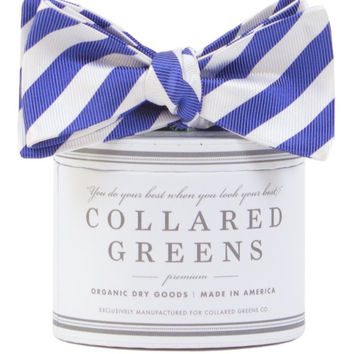 The Collegiate Bow in Blue/White by Collared Greens